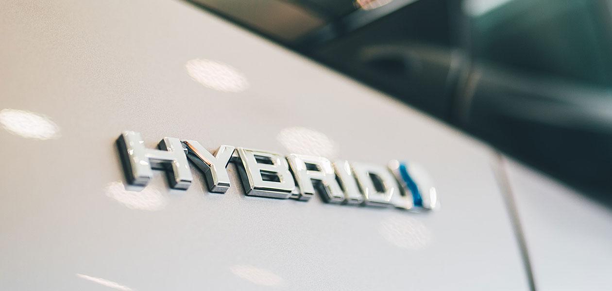 hybridfotoper.jpg