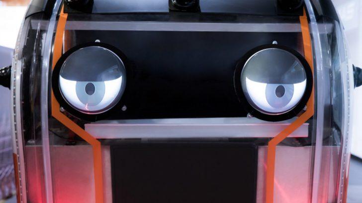 jaguar-wobbly-eyes-1-728x409.jpg