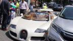 koupil-si-nove-bugatti-a-za-30-minut-ho-naboural-144x81.jpg