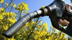odpiska-nakonec-evropska-unie-biopaliva-144x81.jpg