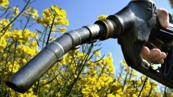 odpiska-nakonec-evropska-unie-biopaliva-352x198.jpg