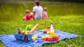 piknik-hl-shutterstock-252256315-352x198.jpg