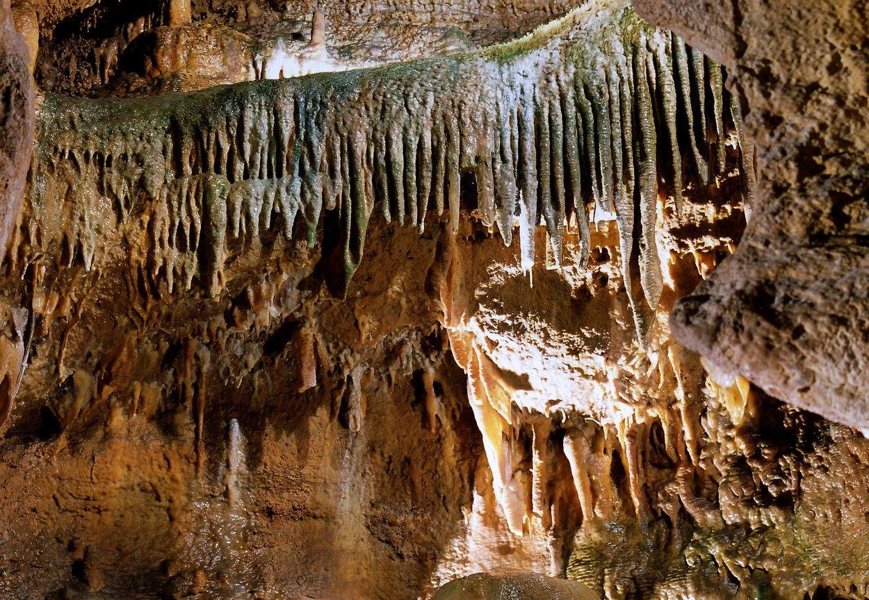 Koněpruské jeskyně – cesta časem miliony let zpět do minulosti