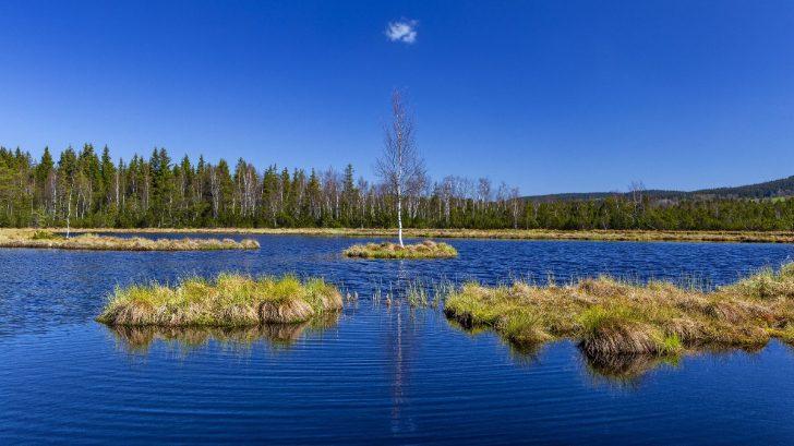 narodni-turisticka-centrala-sumava-728x409.jpg