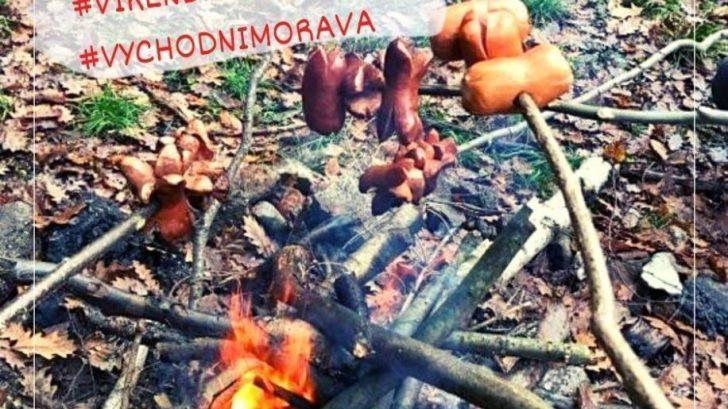 vikendmimomesto_hvozdna-728x409.jpg